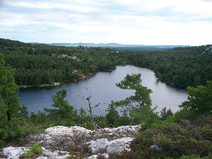 Nellie Lake hill view